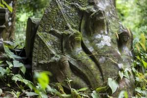 trekking in cambogia tuttocambogia 3