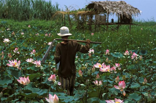 Una Cambogia da scoprire: Kompong Chhnang