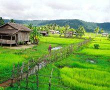 Svay Rieng, il becco dell'anitra che guarda al Vietnam