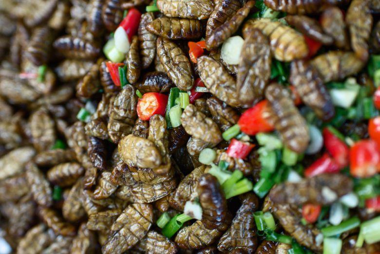 Deliziosi piatti a base di insetti da mangiare in Cambogia!